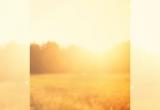 http://www.giovaniverona.it/articolo/le-proposte-del-cpr-per-il-nuovo-anno-pastorale-2019-2020/562